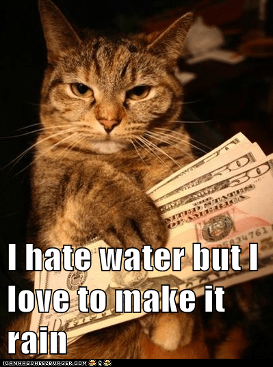 captions,cash,Cats,gangster,make it rain,money,thug
