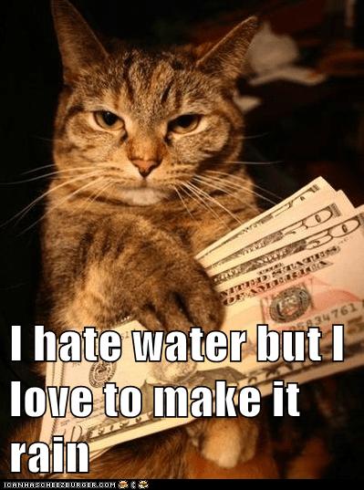 captions cash Cats gangster money thug - 6554265344