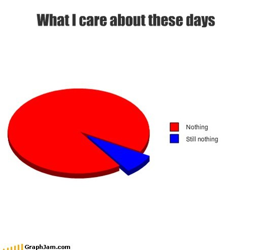 i dont care nothing Pie Chart