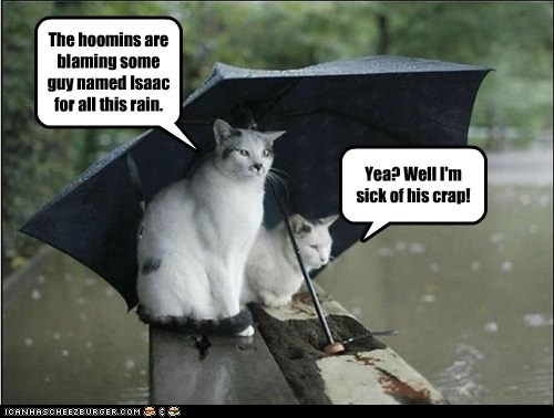 captions Cats hurricane hurricane isaac isaac - 6554451968