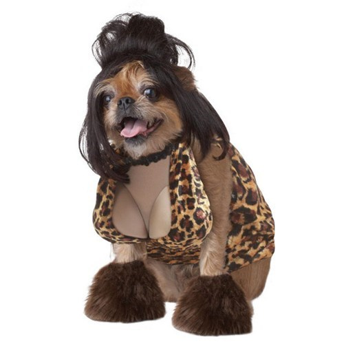 Afternoon Snack pet halloween costumes slutty dog costumes