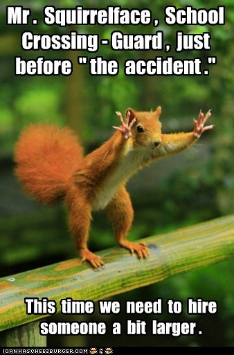 accident crossing guard red squirrel school taller traffic - 6554574336