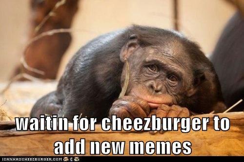 Cheezburger Image 6554578432