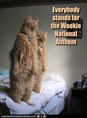 captions,Cats,Movie,national anthem,reference,respect,stand,star wars,wookiee