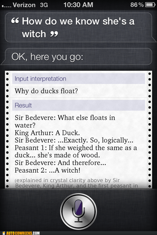 a witch,ducks,monty python,siri