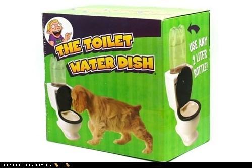 dogs gag goggie swag joke toilet water dish - 6554845184