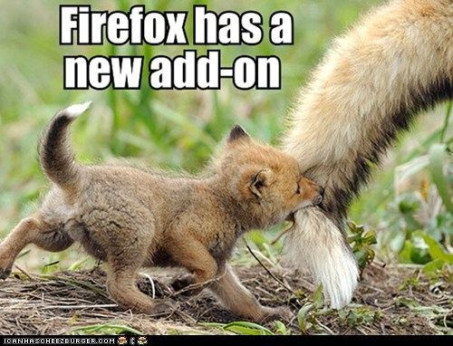 add-ons browsers captions cute firefox foxes internet squee - 6554961920