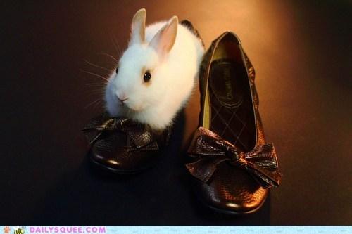 bunny happy bunday high heel if i fits i sits rabbit shoes - 6555388672