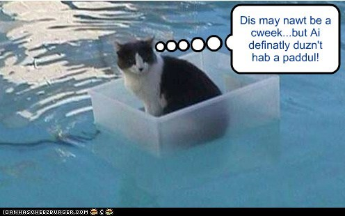 Cheezburger Image 6555432448