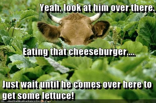 Yeah, look at him over there. Eating that cheeseburger.... Just wait until he comes over here to get some lettuce!