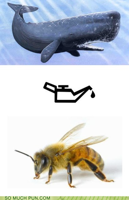 be,bee,ill,i'll,oil,similar sounding,visualization,well,whale