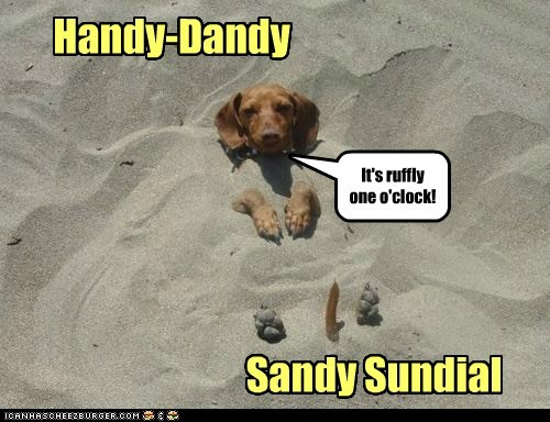dogs dachshund sundial beach sand buried in sand time categoryimage - 6556631296