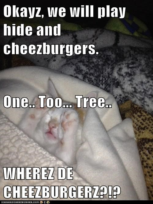 Cheezburger Image 6557545984