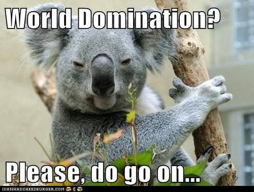 captions evil go on intrigued koala please world domination