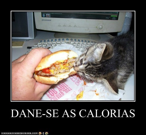 Cheezburger Image 6557680128