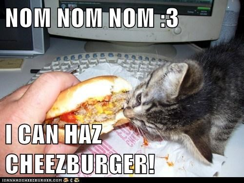 Cheezburger Image 6557913344