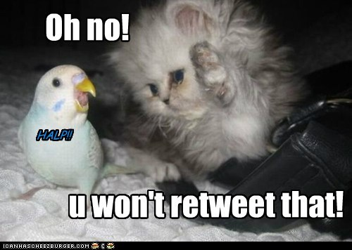 Oh no! u won't retweet that! HALP!!