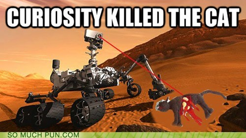 cat curiosity curiosity killed the cat double meaning idiom literalism Mars mars rover - 6558807040
