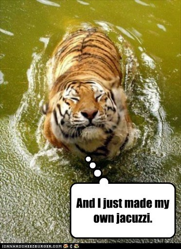 bubbles captions farting jacuzzi made satisfaction smiling smug tiger - 6558810880