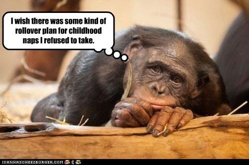 childhood chimpanzee pouting regrets Sad sleep tired - 6558838784
