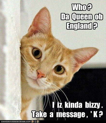 busy captions Cats queen queen of england unimpressed - 6559294976