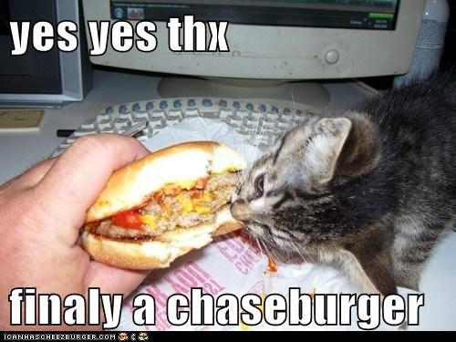 Cheezburger Image 6559349760