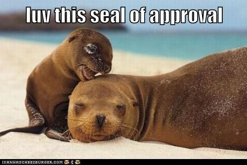 baby,cute,seal,KISS,love,seal of approval