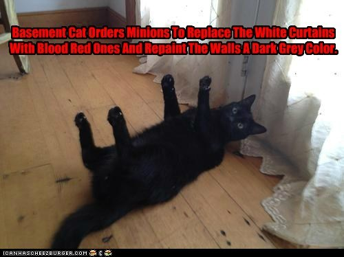 Basement Cat Orders Minions To Replace The White Curtains With Blood Red Ones And Repaint The Walls A Dark Grey Color.