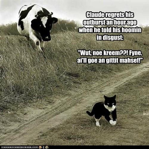 "Claude regrets his outburst an hour ago when he told his hoomin in disgust: ""Wut, noe kreem??! Fyne, ai'll goe an gittit mahsef!"""
