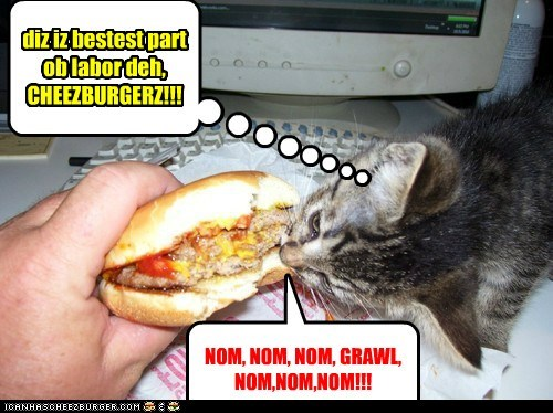 Cheezburger Image 6560703488