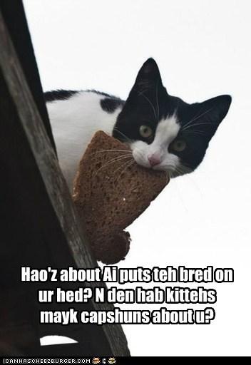 Cheezburger Image 6561167360