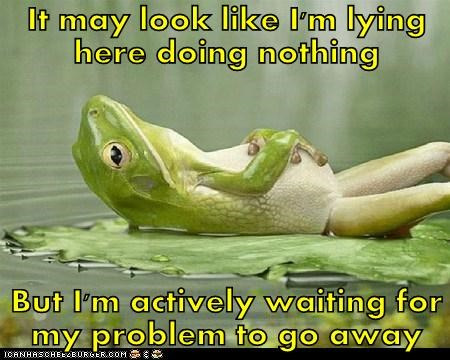 doing nothing frog go away lilypad lying problem procrastinating - 6561451264