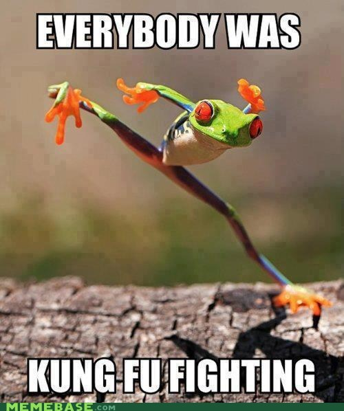 frog,kung fu fighting