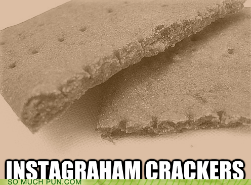 double meaning,filter,graham crackers,homophone,instagram,kitschy,literalism