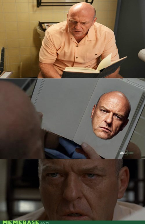 book,breaking bad,eeks what is gonna happen,hank,spoilers
