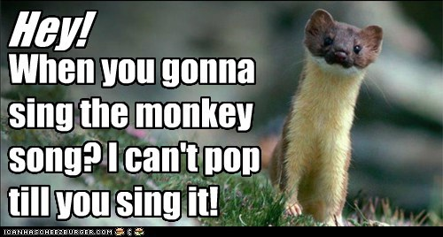 Hey! When you gonna sing the monkey song? I can't pop till you sing it!