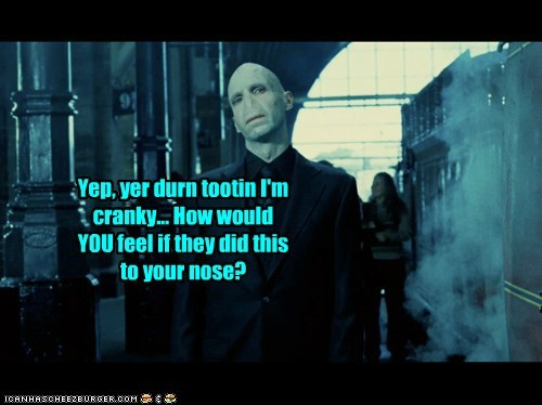cranky,ears,Harry Potter,nose,ralph fiennes,southern accent,voldemort