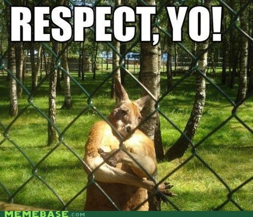 black,kangaroo,respect
