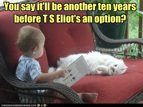 book,captions,Cats,literature,novel,old,reading,t-s-eliot,toddler
