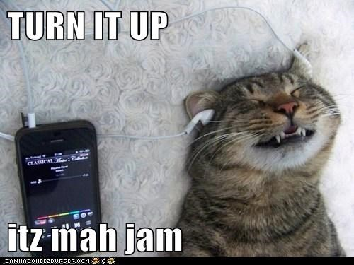 captions,Cats,ipod,jam,Music,my song,song