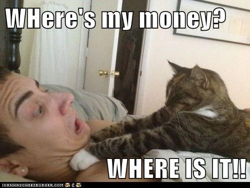 captions Cats choke money strangle threaten wheres-my-money - 6563054848