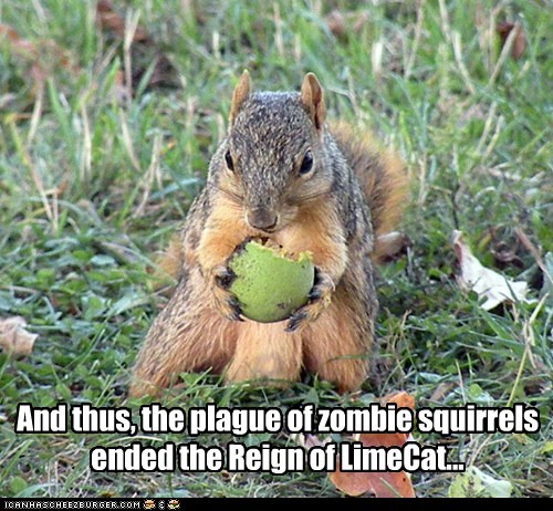 captions,eating,ended,lime,limecat,reign,squirrel,zombie
