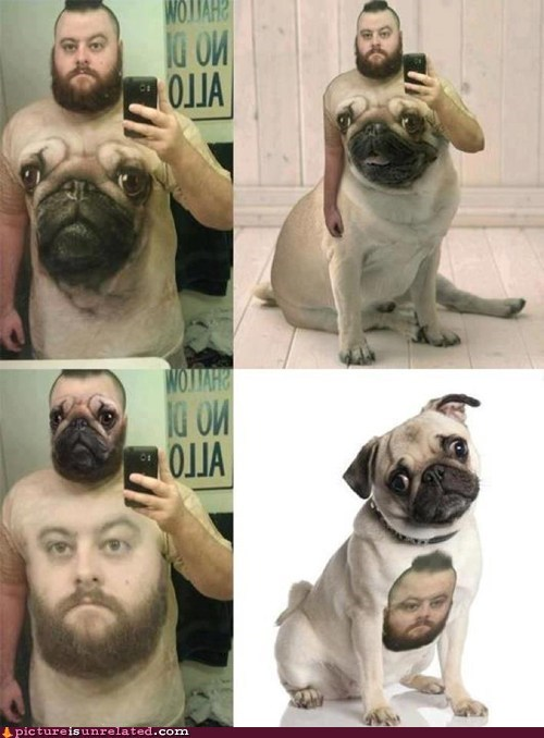 classic photoshop pugs shirt