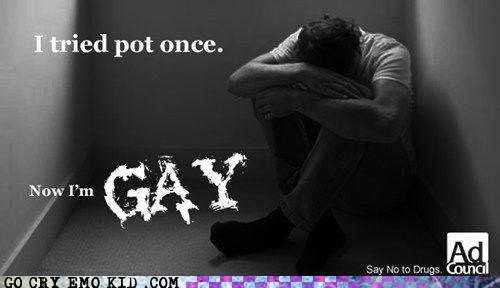 drugs,gay,Not Even Once,pot,wtf