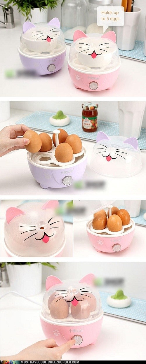 appliance cooker eggs kawaii kitchen kitty