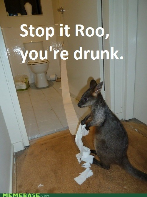 bathrooms,captions,drunk,kangaroos,Memes,messes,stop it,toilet paper,toilets,wallabies