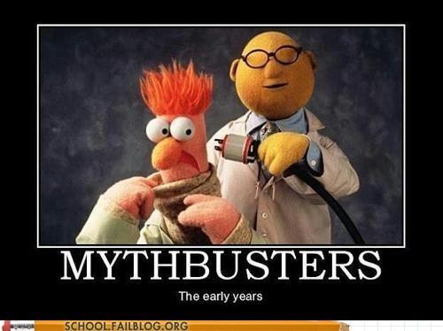 beaker,mythbusters,bunson,halycon
