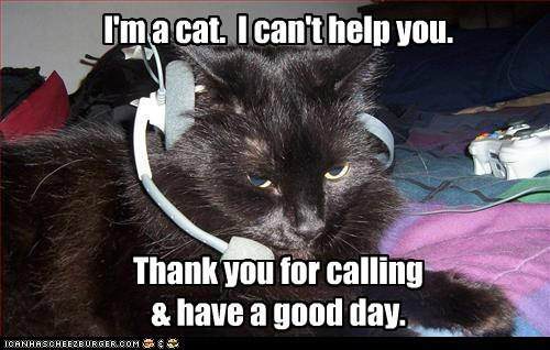 call center captions Cats headset help phone sorry - 6564766976