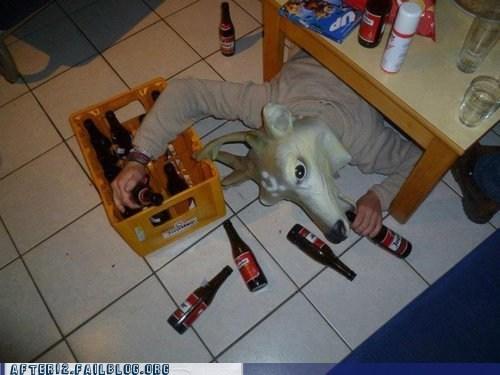 deer head deer you are drunk passed out - 6565793024