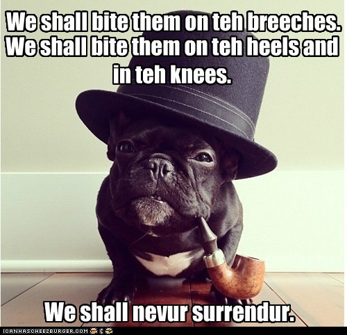 We shall bite them on teh breeches. We shall bite them on teh heels and in teh knees. We shall nevur surrendur.